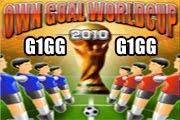 لعبة كاس العالم لكرة القدم 2010