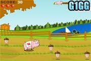 لعبة سباق الخنازير