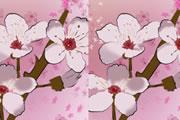 لعبة اختلافات الزهور