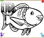 لعبة تلوين السمك